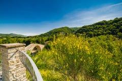 Rampa di singolo ponte della portata fotografie stock libere da diritti
