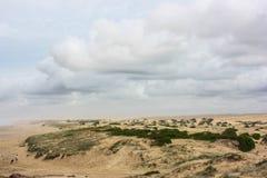Rampa seca del viaje del desierto de Australia Fotografía de archivo