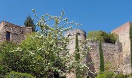 Ramparts  of Girona Royalty Free Stock Photos