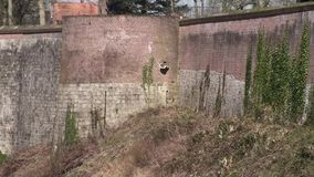 Ramparts of Montreuil-sur-Mer in France Stock Photo