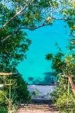 Rampe zwischen Bäumen Lizenzfreie Stockfotografie