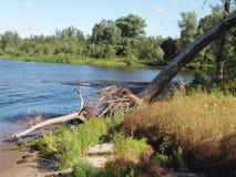 Rampike, Volga-Flussquerneigung Stockfotos