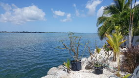 Ramrod Key Florida,. This wonderful little spot I have discovered is walking distance from my home. We take the kids kayaking here Royalty Free Stock Image