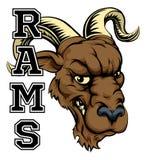 Rams Mascot Stock Photos