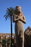 Ramses Stock Photos