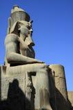 Ramses Stock Image