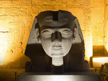 Ramses' head Stock Images