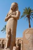 Ramses Ii Stock Afbeeldingen