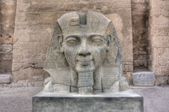 Ramses II Lizenzfreies Stockfoto