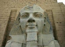 Ramses II Stockbilder
