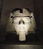 Ramses II hoofd bij Luxor-Tempel bij nacht Royalty-vrije Stock Fotografie