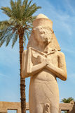 Ramses II. Karnak Temple, Luxor, Egypt Royalty Free Stock Photos