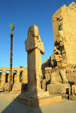 Ramses II in Karnak temple, Luxor Royalty Free Stock Photo
