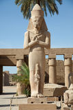 Ramses II statue Royalty Free Stock Photos