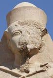 Ramses 2nd Zdjęcia Royalty Free