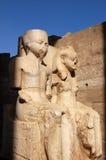 Ramses y estatua de la reina Imagen de archivo libre de regalías