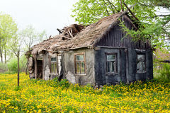 Ramshackle cottage house Royalty Free Stock Images