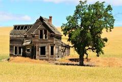 Ramshakled-Haus an einem Sommertag Lizenzfreie Stockfotografie