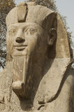 Ramsis II statue Royalty Free Stock Photos