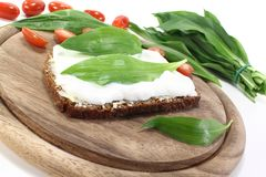 Ramson bread with cottage cheese Royalty Free Stock Image
