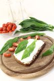 Ramson bread with fresh cottage cheese Stock Image