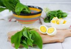 Ramson et oeufs à la coque Placez pour la salade de ressort Photos libres de droits