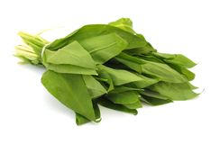 Ramson leaves Royalty Free Stock Photography