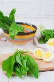 Ramson och kokta ägg Ställ in för vårsallad Arkivfoton