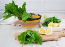 Ramson och kokta ägg Ställ in för vårsallad Royaltyfria Foton