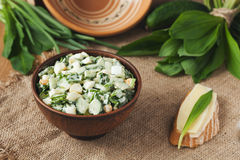 Ramson salad in rustic style Stock Photography