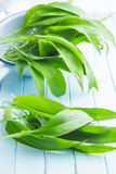 Ramson or wild garlic leaves. On blue kitchen table Stock Image