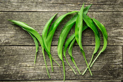 Ramson or wild garlic leaves. On old wooden table. Top view Stock Image