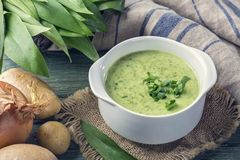 Ramsons cream soup. In a white bowl stock photography