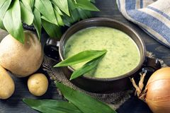 Ramsons cream soup. In a white bowl royalty free stock image