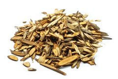 Ramulus Cinnamomi, Chinese Herbal Royalty Free Stock Photo