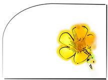 Ranúnculo? ilustración del vector