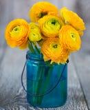 Ranúnculo amarillo en florero Imágenes de archivo libres de regalías