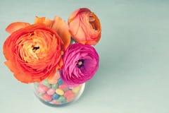 Ranúnculo rosado y anaranjado en un florero adornado por sweeets Fotos de archivo libres de regalías
