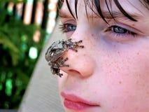 Rana arbórea en cara de los muchachos Fotografía de archivo libre de regalías