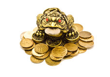 Rana cinese con le monete Fotografia Stock Libera da Diritti