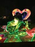 Rana de las luces de China en amor imagen de archivo libre de regalías
