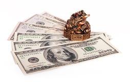 Rana del encargado del dinero Imagen de archivo