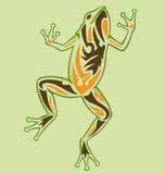 Rana del tatuaje de la vendimia Imagen de archivo libre de regalías
