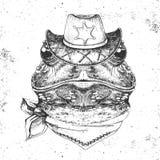 Rana dell'animale dei pantaloni a vita bassa Museruola del disegno della mano della rana royalty illustrazione gratis