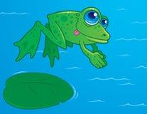 Rana di immersione subacquea Immagini Stock