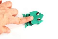 Rana di origami Immagini Stock