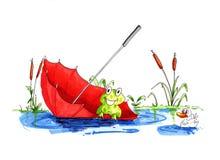 Rana divertida que flota en paraguas Foto de archivo