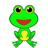 Rana felice verde sembrante sveglia Immagine Stock Libera da Diritti