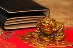 Rana fortunata dei soldi di feng shui cinesi Immagine Stock