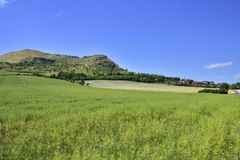 Rana Mountain in Central Bohemian royalty free stock images